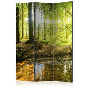 Paraván Forest Lake Dekorhome 135x172 cm (3-dielny)